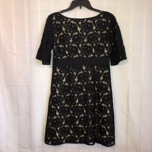 Ann Taylor Dresses - Ann Taylor Dress